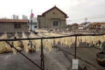 淮安猪皮食品猪皮烘干项目_CGF10/SN